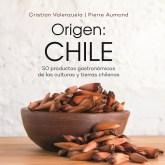 origen chile portada 800x800 (1)
