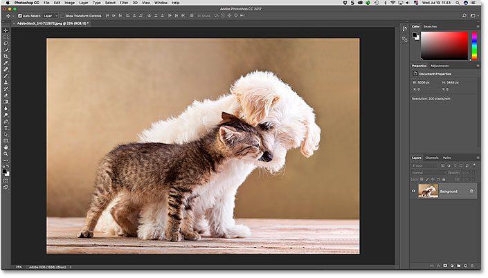 photoshop-cc-interface-3204669
