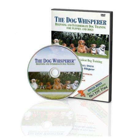 odw-dvd1-720