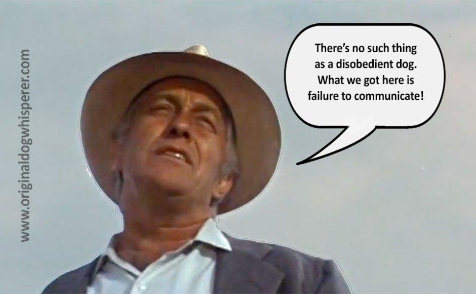 odw-failure-to-communicate-v3