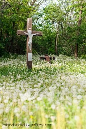 Isus u cvijeću