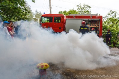 Akcija Vatrogasne postrojbe.