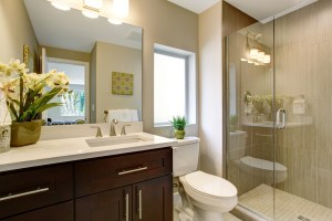 Bathroom Remodel with Walk-in Shower, Toilet and Simple Stained Cherry Vanity