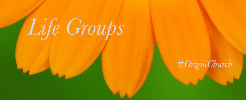 Life-Groups-Sumemer-Banner