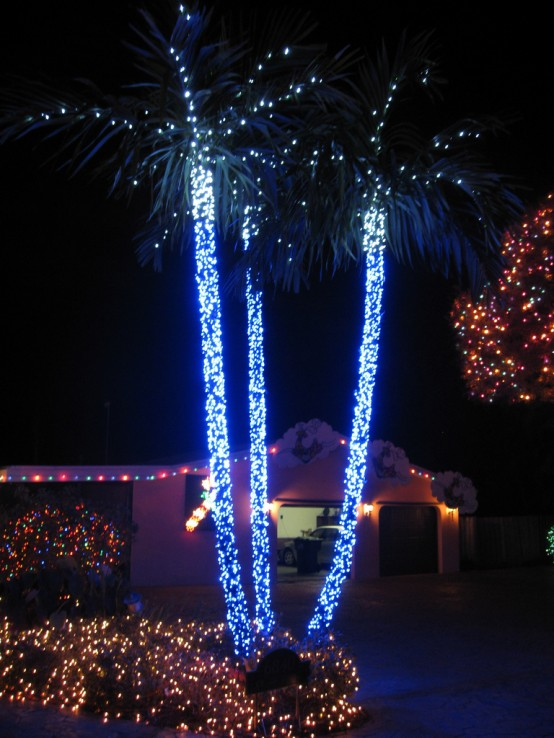 Palm Tree Decoration Idea