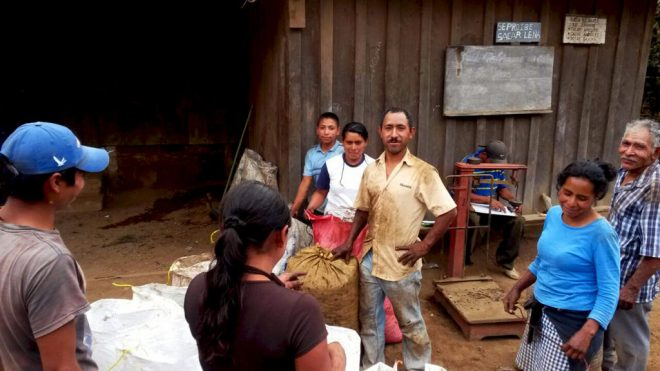 Proud cherry pickers of El Salvador Finca El Aguila