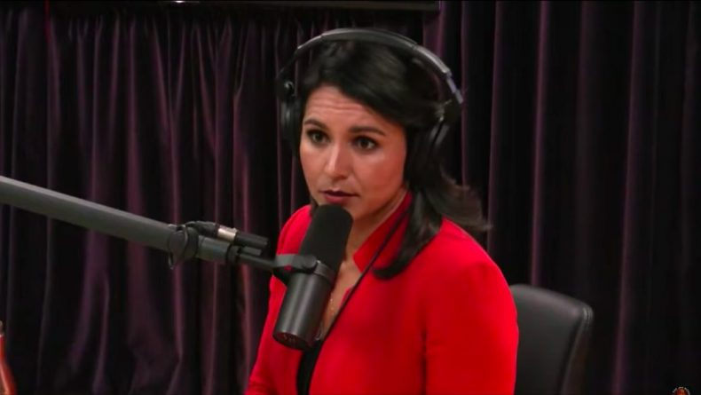 Gabbard Says She'd Drop All Charges Against Assange And Snowden