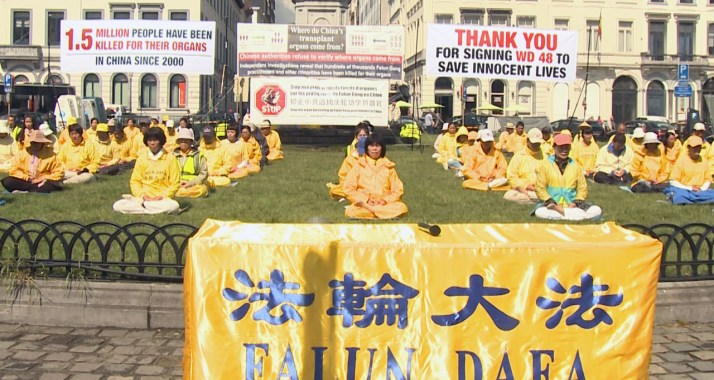 "Reports on China ""Organ Harvesting"" Derive From Front Groups of Far-Right Cult Falun Gong"
