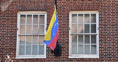 2019: The Year Venezuela's Government Tested its Resilience
