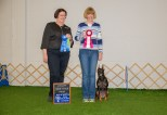 """Debbie Kaminski and her German Pinscher """"Indy"""" earned their Utility Dog title at Oriole DTC's May 24, 2015 obedience trial. She won the class with a 189 and earned her UD in only nine trials. She is the 4th German Pinscher to earn an AKC Utility title."""