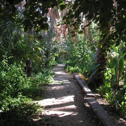 Voyage en Tunisie – 2007