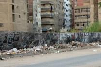 ギザの街、高級お土産店の前の道がこの状態で、野犬の死骸もありました