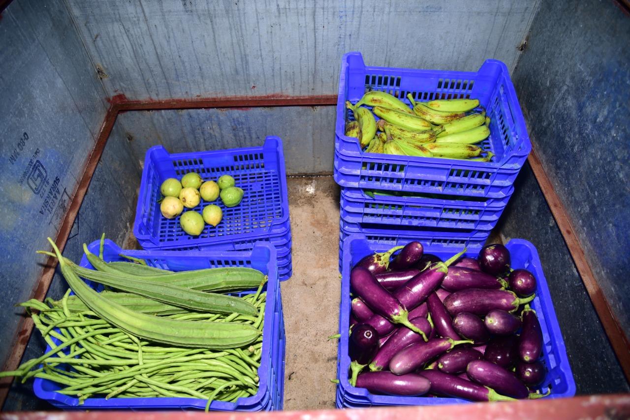 Sabji Cooler: Keeping Vegetables Fresh and Spreading Smiles among Farmers in Sundargarh of Odisha | Odisha Breaking News | Odisha News | Latest Odisha News| Odisha Diary