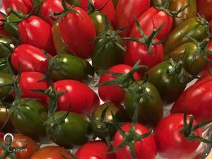 Pomodorini di Torpedino a WineHunter