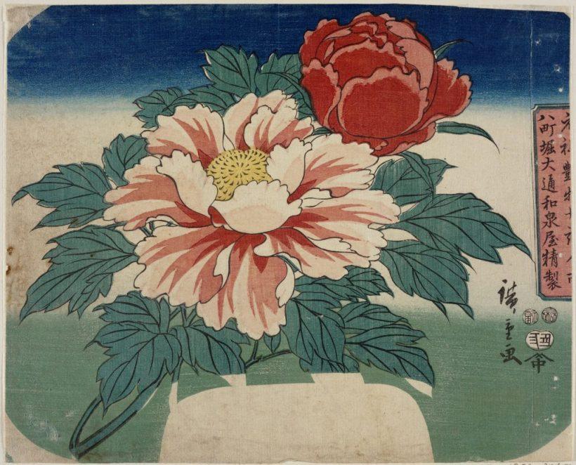 Utagawa Hiroshige Peonie