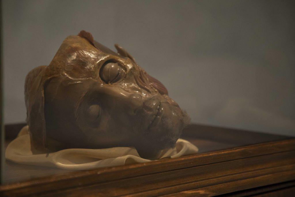 Gaetano Giulio Zumbo, Anatomia di testa maschile, Sublimi anatomie mostra Palazzo Esposizioni