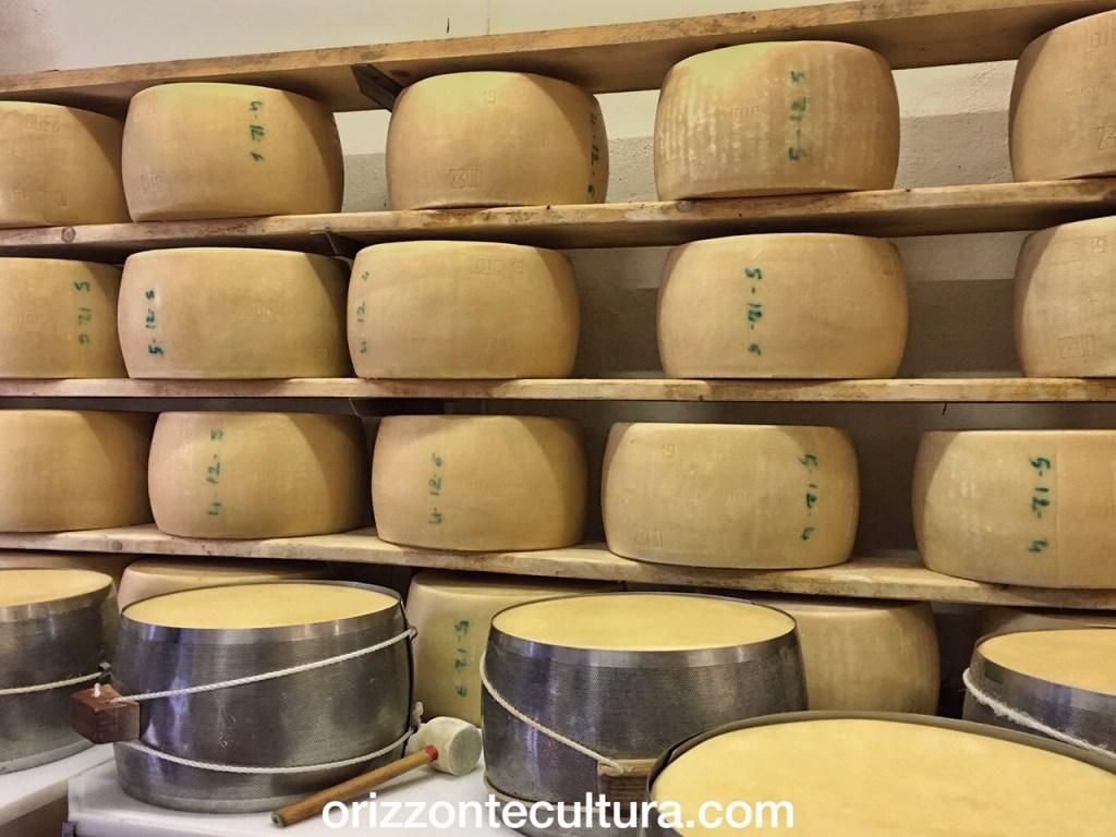 Forme di Parmigiano Reggiano, Società Agricola Saliceto