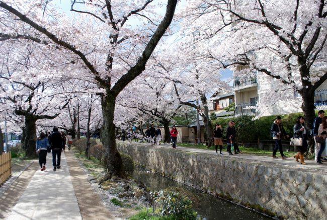 Tetsugaku no michi a Kyoto