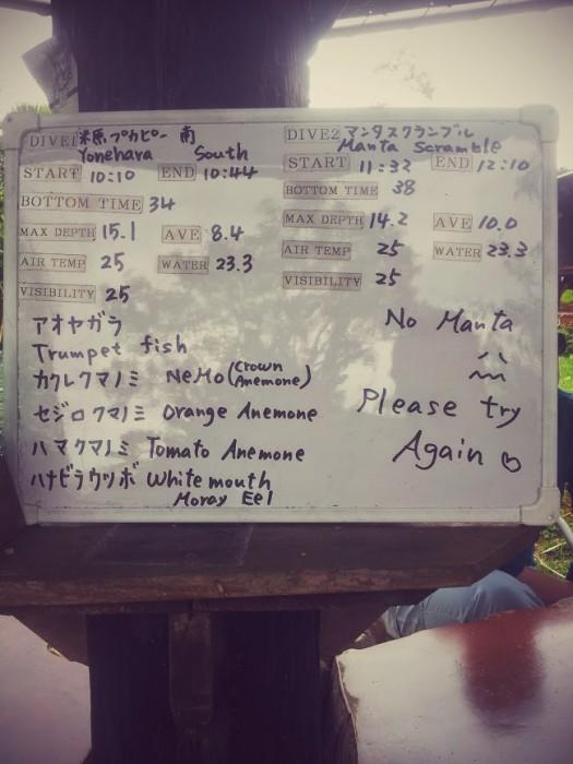 Manta Scramble, Ishigaki: no manta, please try again :(