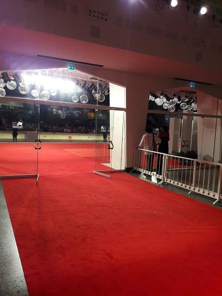 Andare alla Mostra del cinema di Venezia: il red carpet visto dall'interno del Palazzo del cinema