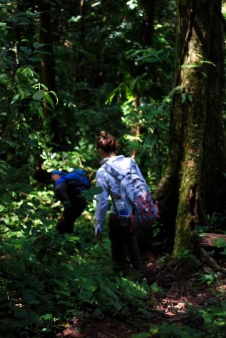 Hiking in Nam Ha valley