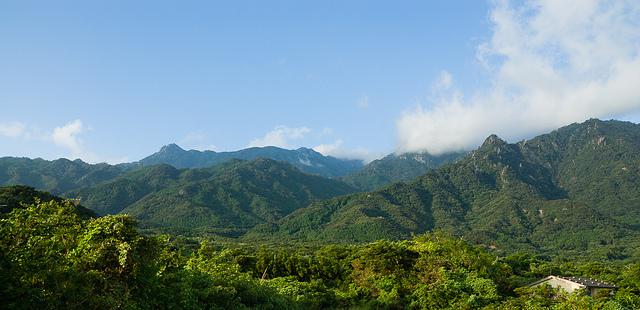 Yakushima, foto di Ippei and Janine Naoi da Flickr