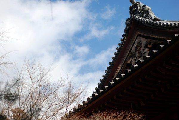 Il tempio Jingo-ji (foto di Patrick Colgan, 2016)
