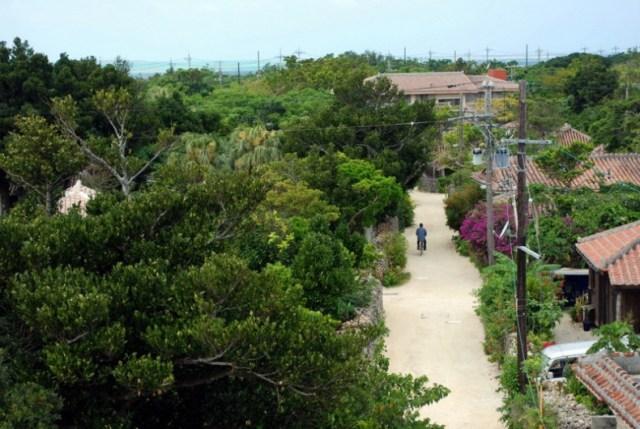 Taketomi, Okinawa (foto di Patrick Colgan, 2014)