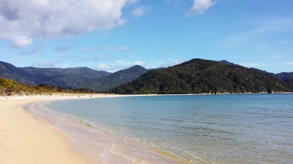 Cosa fare in Nuova Zelanda: Trekking nell'Abel Tasman