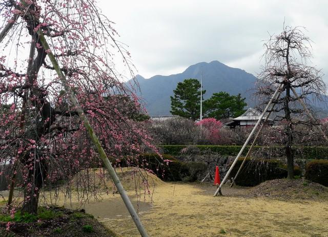 Il profilo del monte Unzen, visto da Shimabara