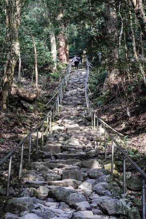 Kumano Magaibutsu, la scalinata nella foresta