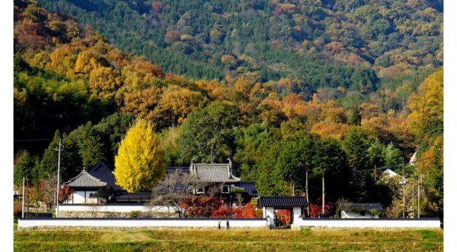 Tempio Daitsuji, Yakage