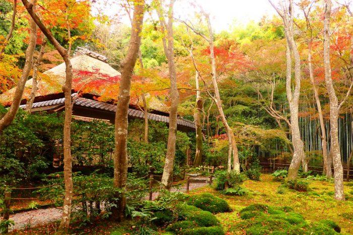 gio-ji, arashiyama