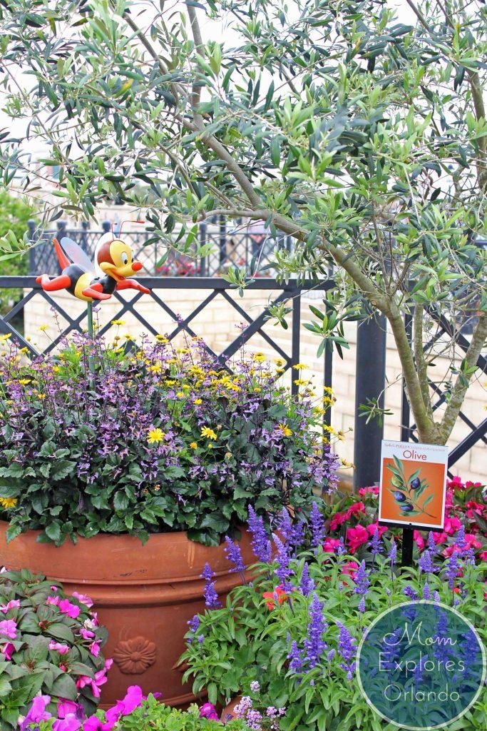 Epcot Flower and Garden Festival - Walt Disney World - Orlando