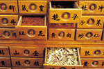 Chinese Herbal Therapy