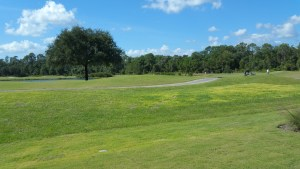 The Lakes at Harmony Golf Course