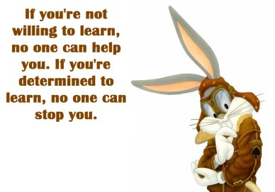 We Don't Know Everything orlando espinosa Looney-Tunes-Bugs Bunny