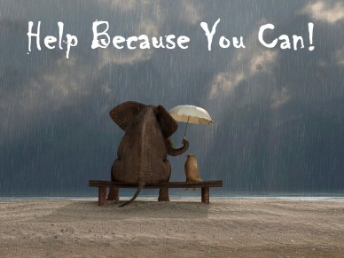 help orlando espinosa Elephant-and-Dog