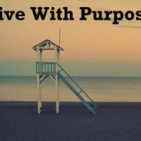 Life Without Purpose