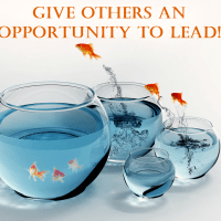An Opportunity To Lead