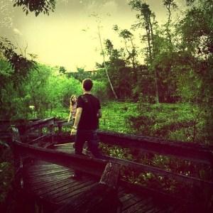 Mead Botanical Gardens - Nature Walk, Winter Park, Florida