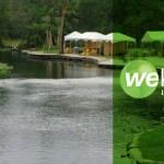 Wekiva Island – free admission