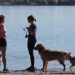 Dog Parks in Orlando