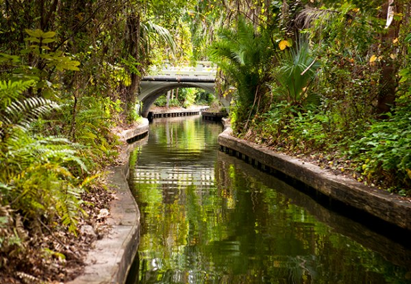 Cheap things to do in Orlando: image of canal waterway during the Winter Park Scenic Boat Tour.