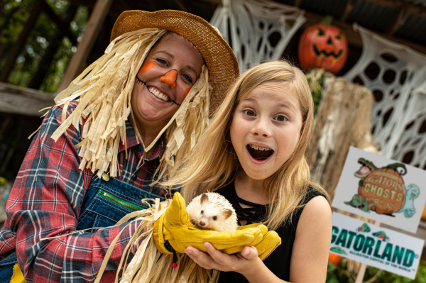 Halloween Orlando: Gatorland's Gators, Ghosts And Goblins: image of girl holding a porcupine at Gatorland