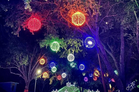 Christmas Lights In Orlando 2020 Orlando on the Cheap   Deals, discounts and free and cheap things