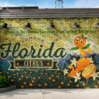 Orange Bird-Inspired Wall Mural Unveiled at Disney Springs