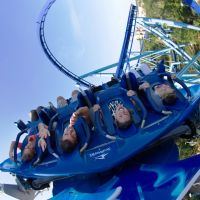 SeaWorld Orlando and Busch Gardens Tampa Bay Announce All-Season Dining Pass