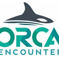 WATCH: Orca Encounter, SeaWorld Orlando's New Killer Whale Show Debuts