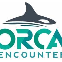 WATCH: Orca Encounter, SeaWorld Orlando's New Killer Whale Show Debuts